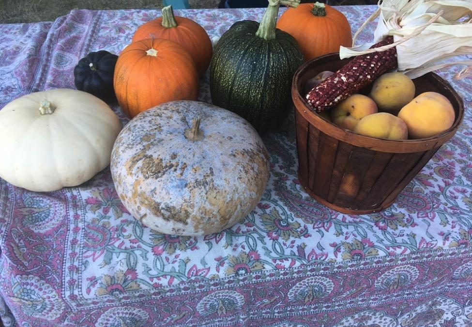 Harvest Brunch 2019